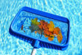 Above Ground Pool Maintenance and Care Guide